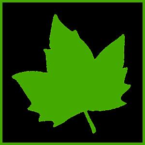 detrazioni fiscali ristrutturazione bonus verde