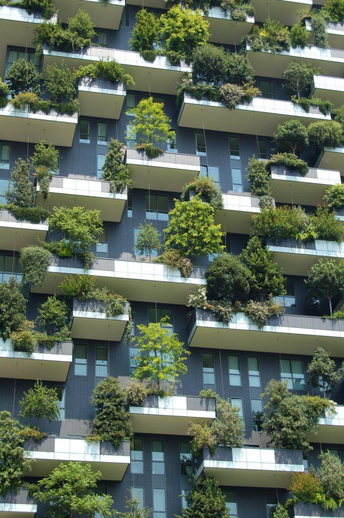 bonus verde 2019-detrazioni fiscali ristrutturazione-bonus verde-bonus verde ristrutturazioni-ristrutturazioni torino-ristrutturazioni piemonte-bonus verde balconi